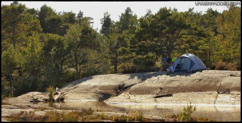 Vanerpaddel Lurö 20140904-009a