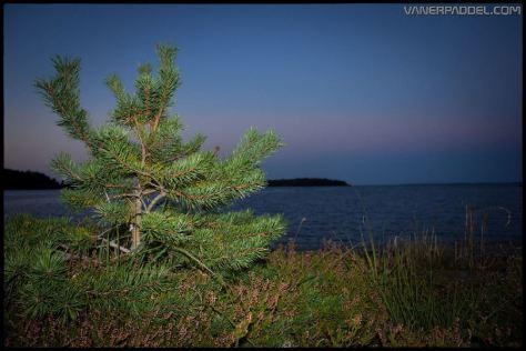 Vanerpaddel Lurö 20140904-029