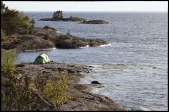 Vanerpaddel Millesvik