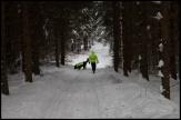 Viklund_SB-60_Snapseed