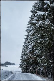 Viklund_SE-422_Snapseed