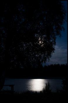 Viklund_01-76_Snapseed