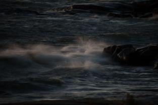 Vanerpaddel Viklund 331-6